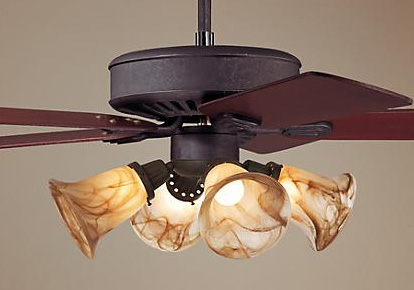 Ceiling Fan Chandelier And Light Fixture Installation Services